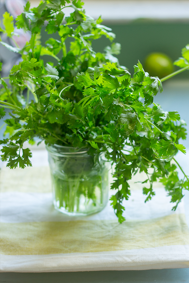 I have used it as a dressing, as a dipping sauce, as a marinade. It really is that amazing and just that versatile. Did I mention it only has 5 ingredients? Basically, if you have cilantro, lime, pistachio, olive oil, and garlic you can enjoy this awesomeness.