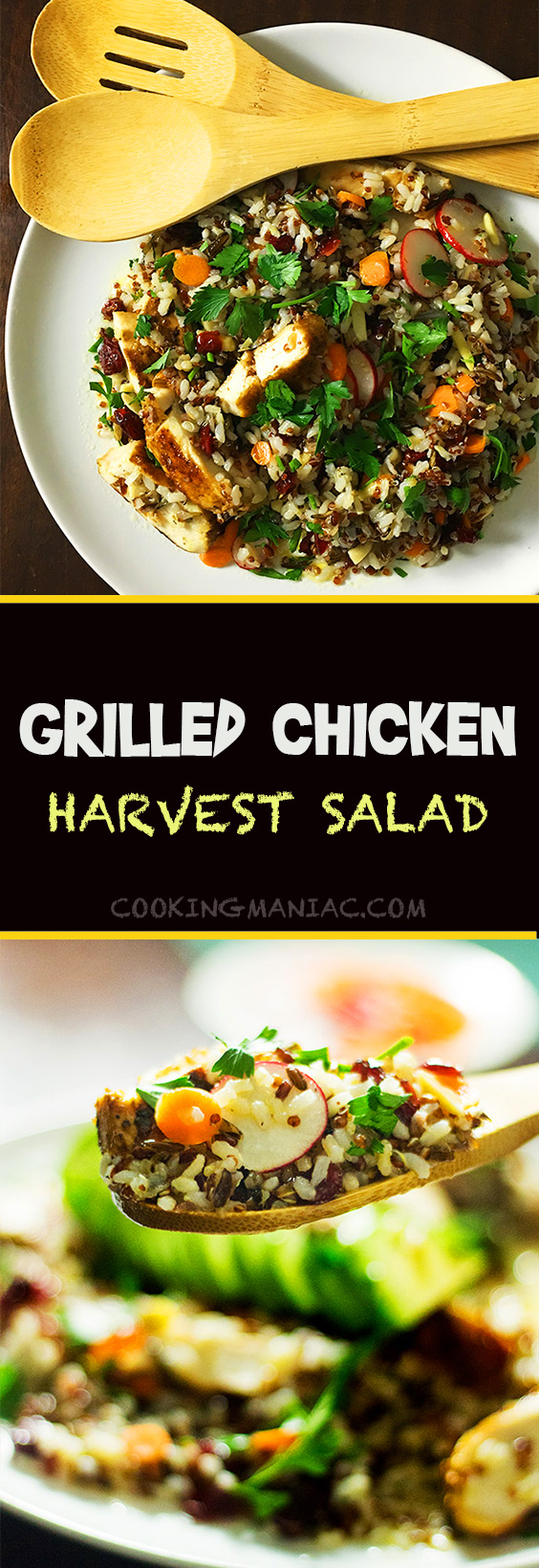 Grilled-Chicken-Harvest-Salad-Long-Pin