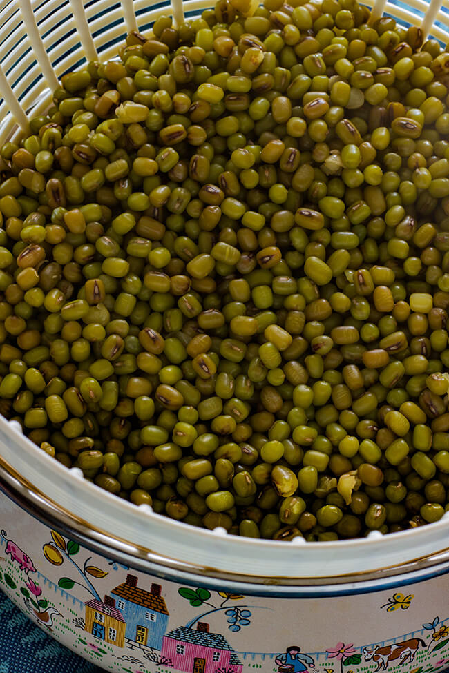 This recipe answers the basic question of How to cook mung beans. Mung beans are rich in vitamins and are so easy to add to most salads for added nutrients.