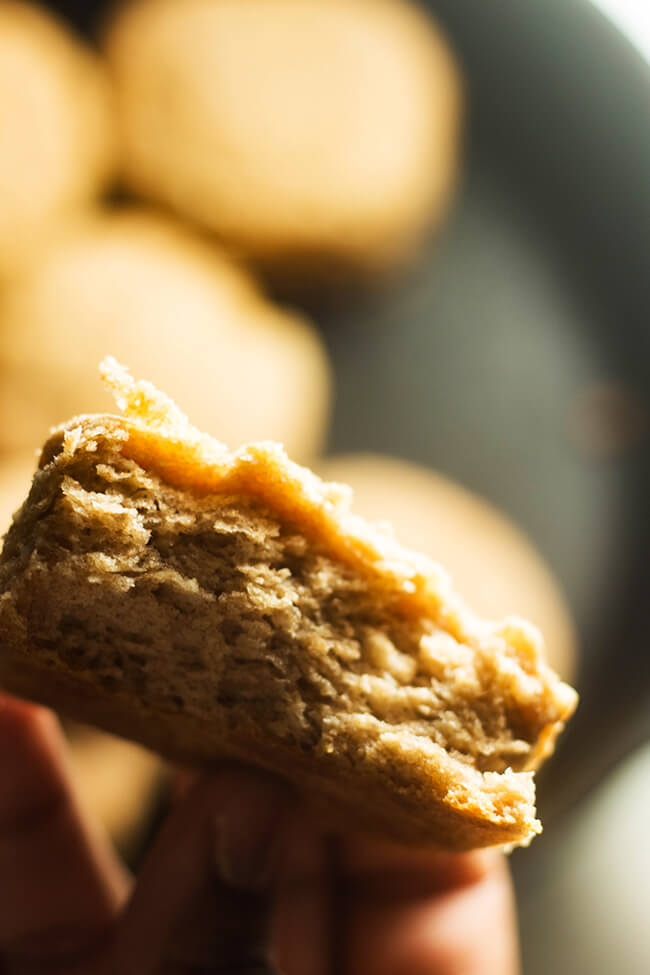 This Flaky Whole Wheat Buttermilk Biscuit has exterior to be flaky and the interior pillowy and light. Satisfying and healthy is a pretty hard combo but these biscuits deliver on that promise.